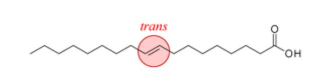 Structure of a trans fatty acid