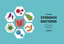 Stomach Bacteria