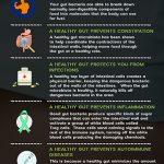 gut-health-infographic