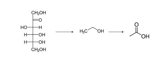 Figure 1: Making apple sugar into acetic acid.