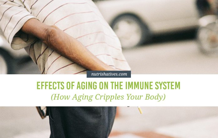 Effects of Aging on the Immune System