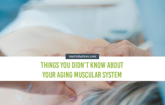 Things You Didn't Know About Your Aging Muscular System