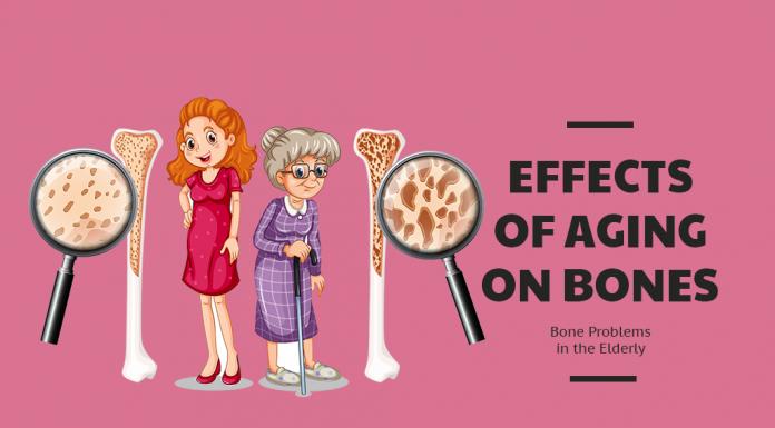 Effects of Aging on Bones