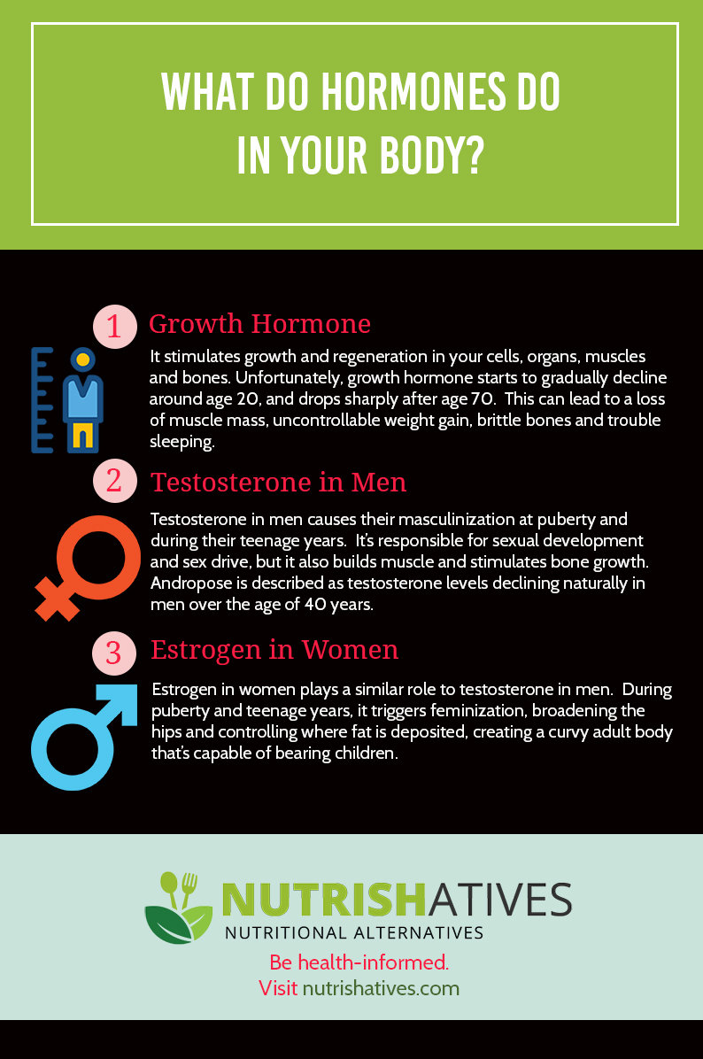 What Do Hormones Do in Your Body