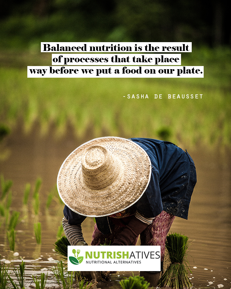 quote on balanced nutrition by Sasha de Beausset