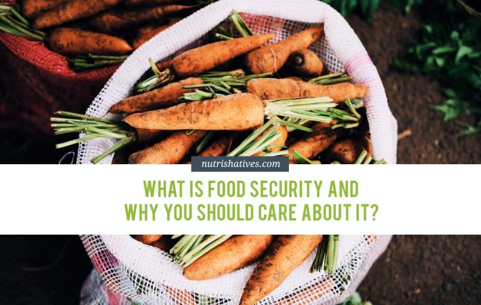 What is Food Security