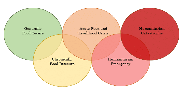 visual representation of the five FAO food security classifications
