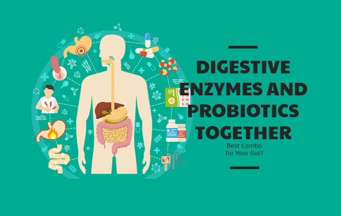 Digestive Enzymes and Probiotics Together