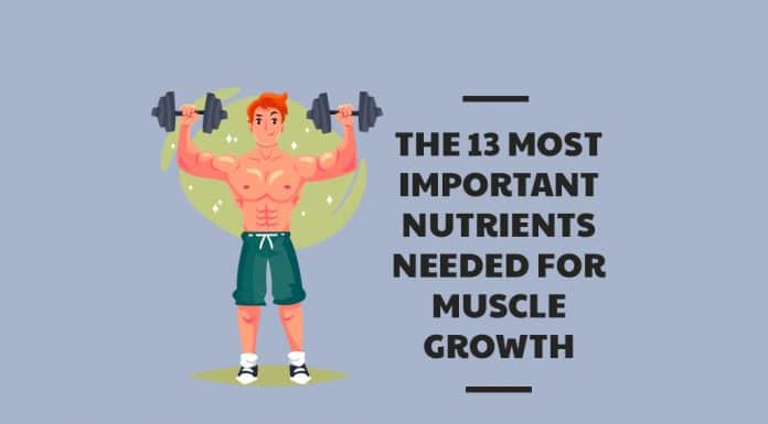 The 13 Most Important Nutrients Needed for Muscle Growth